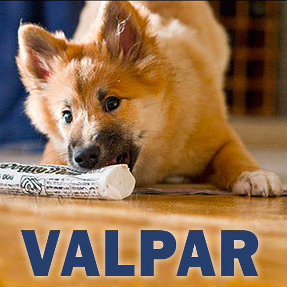Valpar